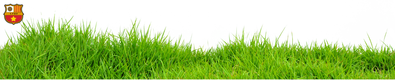 1FAV Bad Münstereifel
